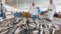 Al Jubail Fish Market